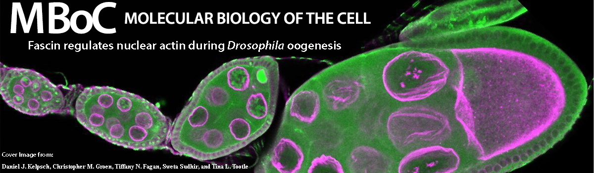 Molecular Biology of the Cell cover image