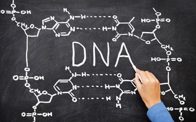 DNA on chalkboard
