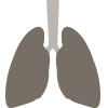Icon of Lungs