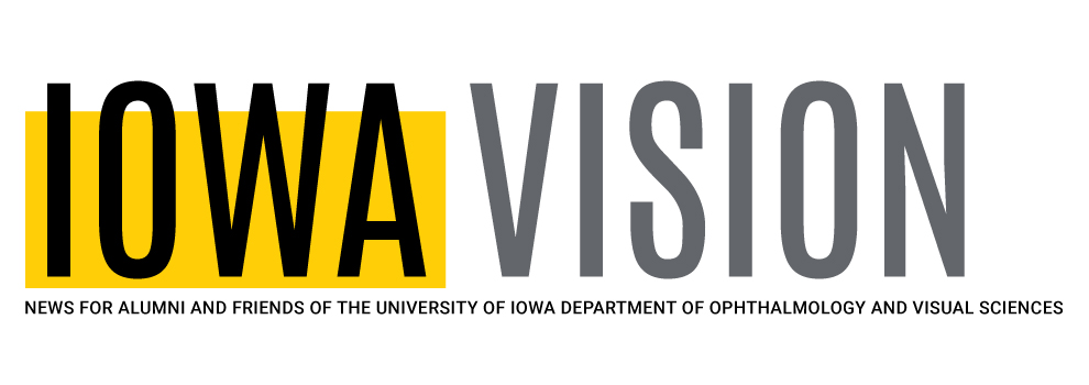 Iowa Vision banner
