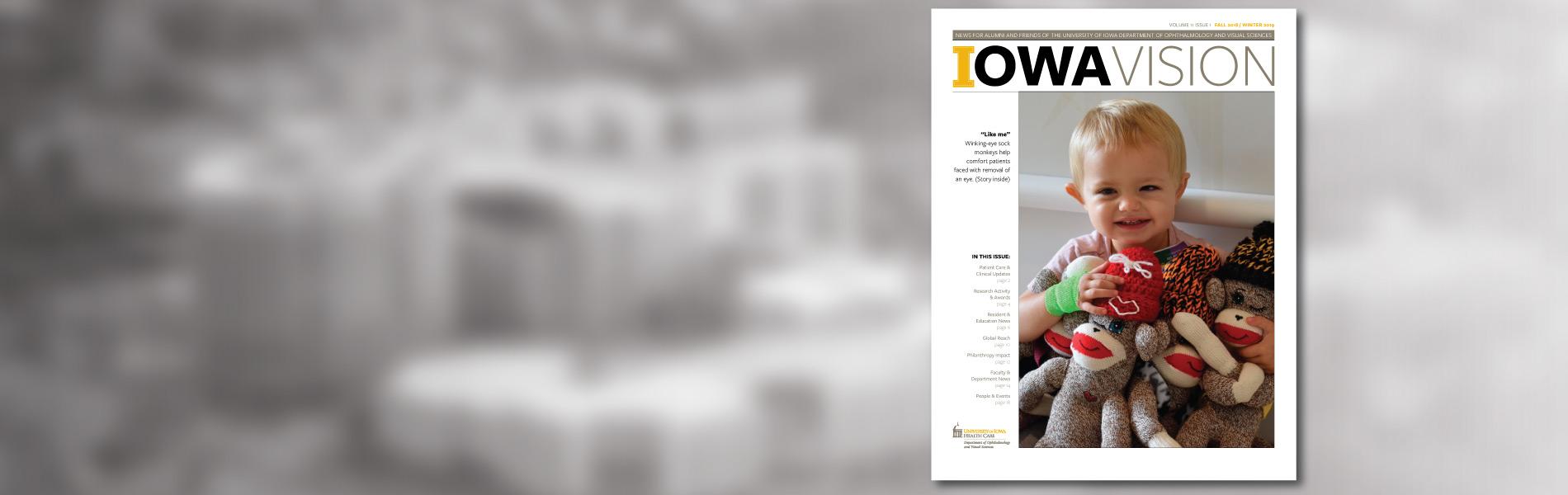 Iowa Vision