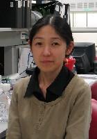 Yoko Nakano