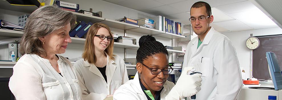 Professor Wendy Maury lab