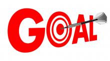 Goal Target image