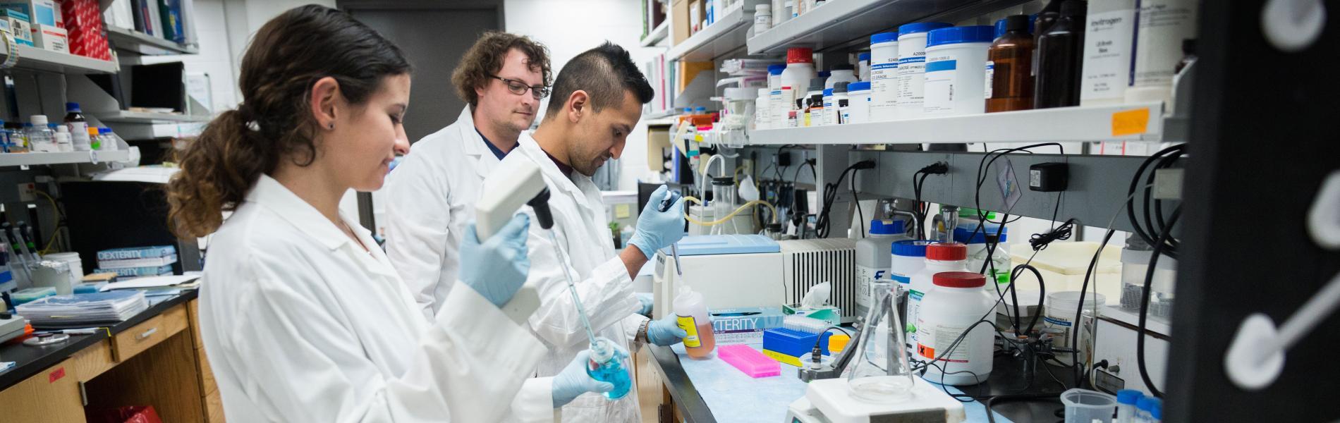 Dr. Dawn Quelle's lab personnel