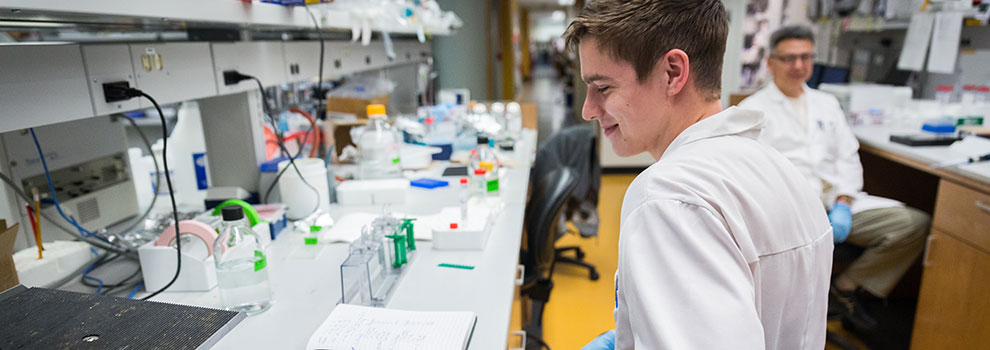 Andrew Olson in Rahmouni lab