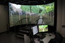 VR Display
