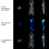 Examples of microPET Imaging