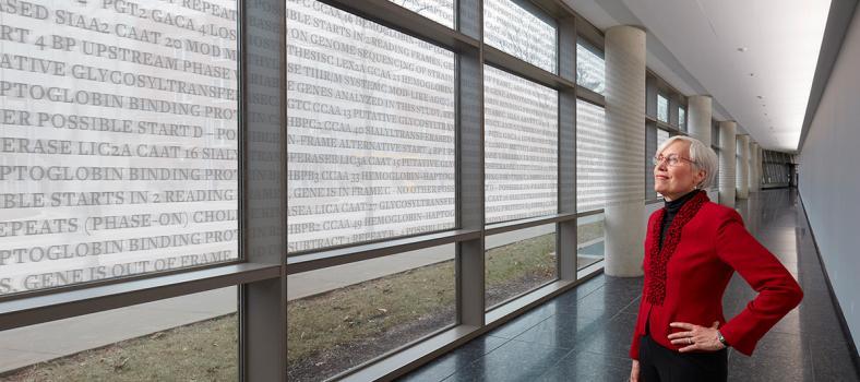 Pat Winokur, MD, reviewing large data array