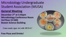 Microbiology Undergraduate Student Association (MUSA) meeting and make agar art promotional image