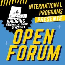 Bridging Domestic and Global Diversity Open Forum promotional image