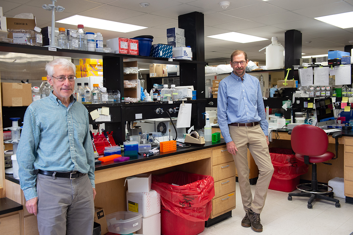 Paul McCray, MD, and Stanley Perlman, PhD, at their lab