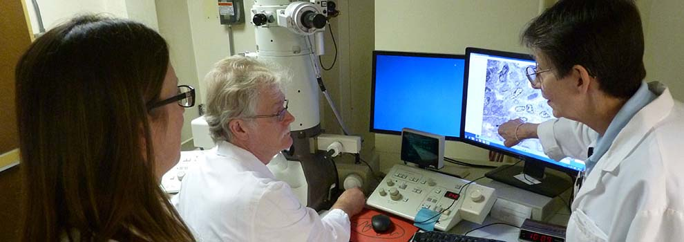 Electron Microscopy Lab